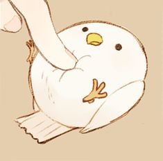 grafika bird, cute, and kawaii