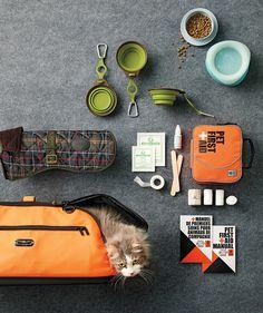 Creature Comforts: Travelling #Pet Essentials #cat