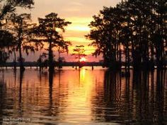 Atchafalaya Basin - Louisiana USA