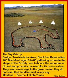 The Sky Grizzly. Badger Two Medicine Area, Blackfoot Reservation. 400 Blackfeet, aged 3 to 80 gathering to create the shape of the Grizzly bear to honor the sacredness of land and proclaim the need for its preservation. They send a message to the government, they do not want their land harmed in any way. Montana. Source: Lakota Times.