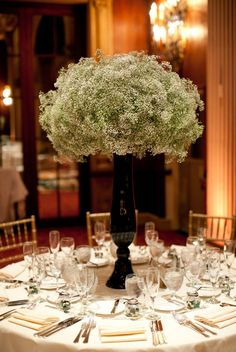 Wow, is this queen anne's lace? Love it with the black vase