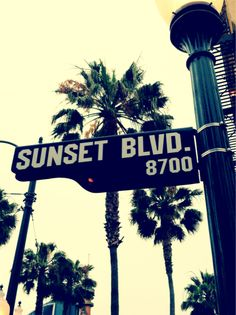 Sunset Blvd. (Taking a picture of the Street Signs in the area that you're visiting.