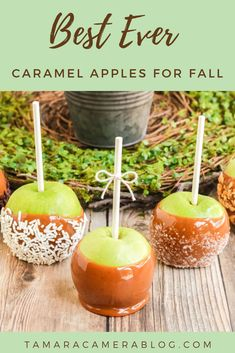 These Best Ever Caramel Apples are perfect for fall. They fill you with wonder and nostalgia and give you something to make out of all those picked apples! Travel Tips Travel Hacks packing tour Easy Holiday Recipes, Fall Recipes, Yummy Recipes, Travel Hacks, Travel Packing, Budget Travel, Travel Ideas, Travel Guide, Travel Inspiration