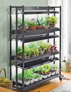 3-Tier Sun Lite Garden - 12 square feet of growing space. $599.00 gardeners.com