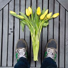 """""""Tulips makes us happy"""" #flow #letitflow #tulips #tulipanes #flores #flor #amarillo #yellow #tenis #shoes #green #flowerstagram #flowergram #coolflowers #delivery #plants"""