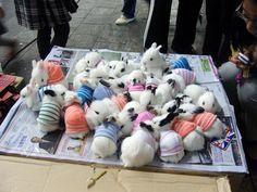 Bunnies in sweaters.