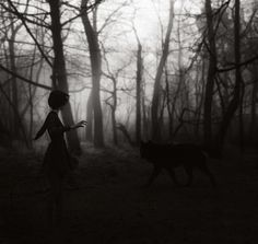 youre not out of the woods yet by Vanessa Paxton, via 500px