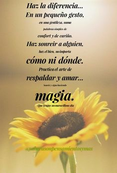 Positive Inspiration, Coaching, Positivity, Happy, Amor, Nice Day, Compliments, Frienship Quotes, Images For Good Night