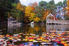 Irvine Park & Zoo - Chippewa Falls, WI