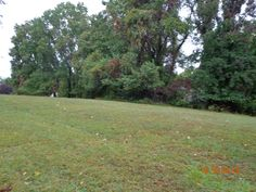 LAND FOR SALE...BUILD TO SUIT...PERC AND READY FOR YOUR HOME....DARREL DR. NORTH EAST, MARYLAND 21901 CHESAPEAKE ISLE WATER ACCESS COMMUNITY $90,000