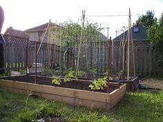 Raised beds garden on pinterest raised beds vegetable garden and veggie gardens for How deep should a raised vegetable garden be