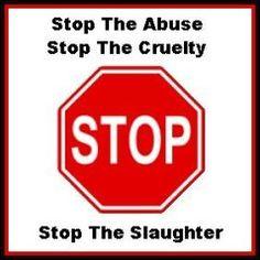 say no to animal cruelty -
