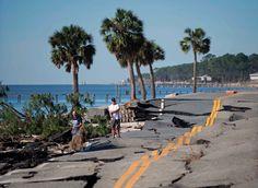 Hurricane Michael Survivor 2018 Sticker Decal Severe Weather Florida Storm