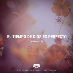 Aún no ha llegado el momento de que esta visión se cumpla; pero no dejará de cumplirse. Tú espera (...) - Habacuc 2:3