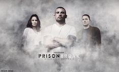 19 Best Prison Break Hd Wallpapers Images Tv Series Wentworth