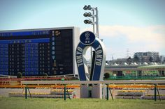 Tokyo horse race track