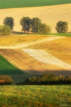krajina v lete - portfólio