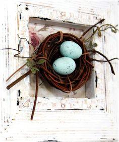 Framed Birds Nest