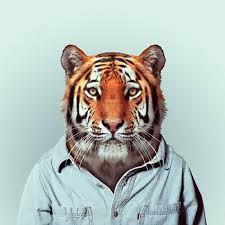 Výsledek obrázku pro half human animal