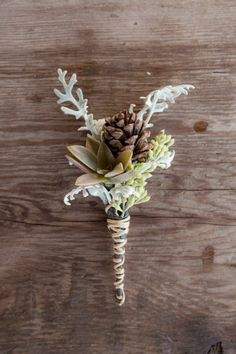 Pine cone, succulent and dusty miller boutonniere for a winter wedding. Boutonnieres, Winter Boutonniere, Wedding Boutonniere, Succulent Boutonniere, Rustic Boutonniere, Winter Bouquet, Rustic Bouquet, Winter Wedding Flowers, Dream Wedding