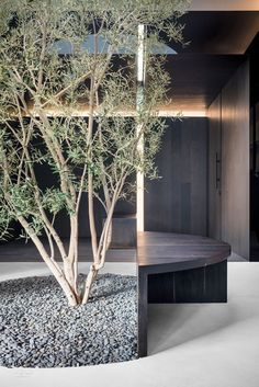 Image 7 of 17 from gallery of Road to Awe / Dan Brunn Architecture. Photograph by Brandon Shigeta Home Design, Modern House Design, Interior Garden, Interior Plants, Architecture Images, Interior Architecture, Architecture Board, Interior Design Magazine, Interior Design Inspiration