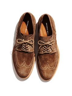 5008f139f3 Suede Wingtip Oxfords by Antonio Maurizi at Gilt