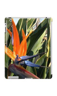 Bird of Paradise (Strelitzia) from A Gardener's Notebook by Douglas E.  Welch