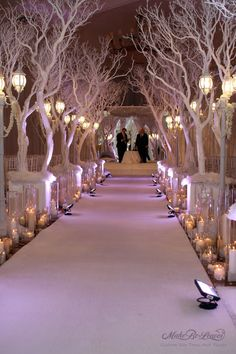 Winter Wonderland Themed Wedding with birch trees. Beautiful! What would be the spring equivalent....
