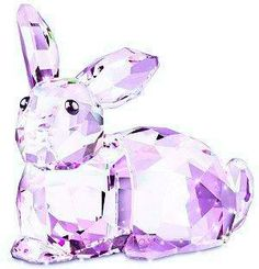 Crystal Rabbit Moon of Cooperation
