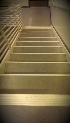Even at 52 years old, basements still give her the heebie jeebies and she knows better than to venture down the stairs before turning all of... www.onesentenceperiod.com