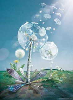 Dandelion art, make a wish Dandelion Clock, Dandelion Wish, Dandelion Flower, Dandelion Designs, Kobold, Matte Painting, Jolie Photo, Whimsical Art, Beautiful Paintings