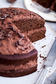 Vegan Gluten-Free Chocolate Cake / Healthy, Oil-Free / Goodness is Gorgeous