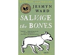 'Salvage the Bones,' by Jesmyn Ward, Stanford asking incomming students to read homegoing, sixth extinction and salvage the bones