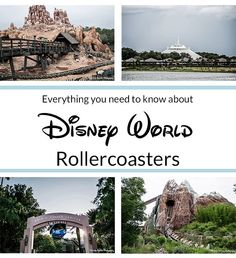 A review of Disney World's 7 roller coasters: Space Mountain, Seven Dwarfs Mine train, Barnstormer, Big Thunder mountain railroad, Rockin' Roller Coaster, Primeval Whirl, Expedition Everest, and info about Rider Swap