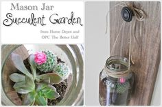 Guest Blogger Josie Hagan creates a cute, inexpensive succulent container from a Mason jar and shows you how she did it!