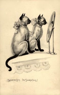 """Like my Babbles and Rambles! """"Siamese cats (The Siamese twins)"""" - Vintage postcard, c. 1917"""