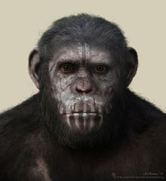 The Dawn of the Planet of the Apes : Caesar Warpaint Concept, Joshua Min on ArtStation at http://www.artstation.com/artwork/the-dawn-of-the-planet-of-the-apes-caesar-warpaint-concept