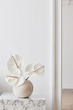 Pale Beige and Brown Figures Abstract Print, Abstract Wall Art Abstract Wall Art, Abstract Print, Cool Ideas, Arte Floral, Deco Design, Ikebana, Interior Inspiration, Planting Flowers, Floral Arrangements