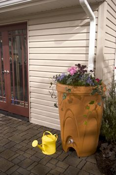 Rain Barrel - Pretty & useful ..love it!