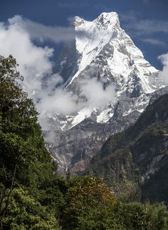 """Fishtail, Nepal, first light.  Machapuchare or Machapuchre, """"Fish Tail"""" in English, is a mountain in the Annapurna Himal of north central Nepal. It is revered by the local population as particularly sacred to the god Shiva, and hence is off limits to climbing."""