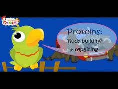 As it is rightly said that each and every one should have a good knowledge of food groups and also know its importance especially parents and this video helps in giving information about it. healthy food always has healthy effect on child's growth.In this video clear  understanding of healthy food intake and its importance for body growth and development is given, which is very essential for a child.