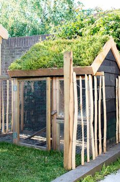Eigen Huis & Tuin: a rural garden with chickens and lots of greenery Tanja van Hoogdalem Building A Chicken Coop, Building A Shed, Shed Conversion Ideas, Home And Garden Store, Organic Gardening Tips, Garden Cottage, Terrace Garden, Garden Pots, Easy Garden