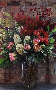 Australian flowers for table decorations – Yellow Pages Christmas Flower Arrangements, Christmas Flowers, Beautiful Flower Arrangements, Fall Flowers, Floral Arrangements, Beautiful Flowers, Tropical Flowers, Flor Protea, Australian Christmas