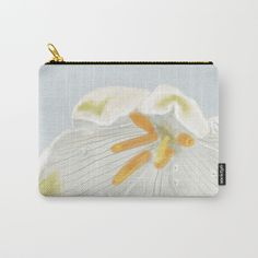https://society6.com/product/one-flower1172628_carry-all-pouch?curator=swingandbloom