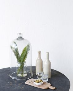 This heavy glass cloche is the perfect thing to showcase something pretty and uniquely special. Bamboo Bar, Bamboo Poles, Custom Mattress, Bedside Shelf, Tall Headboard, French Country House, Vintage Market, Vase, Modern