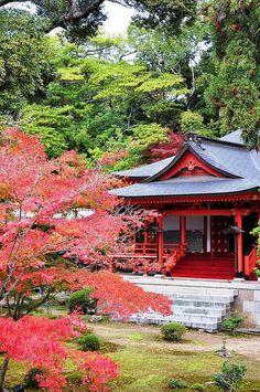 yuikki:  @Daikaku-ji temple, Kyoto, 大覚寺 l hyas_private
