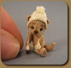 Aleah Klay - teddy bear