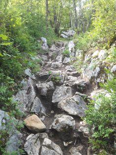Chemin de rando au taillefer de Duingt