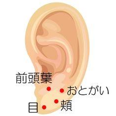 耳つぼで小顔効果!効果をアップさせる耳つぼジュエリーも紹介