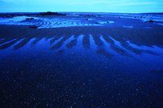 rasguños del mar